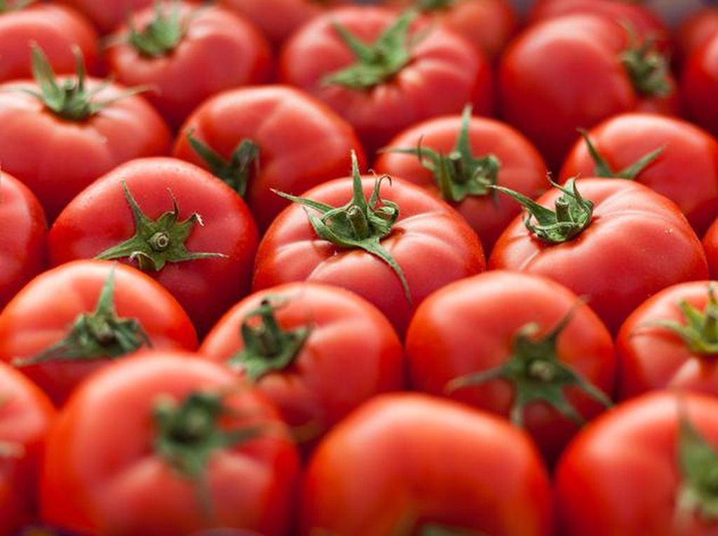 Rusia Setop Impor Tomat Azerbaijan, Kenapa?