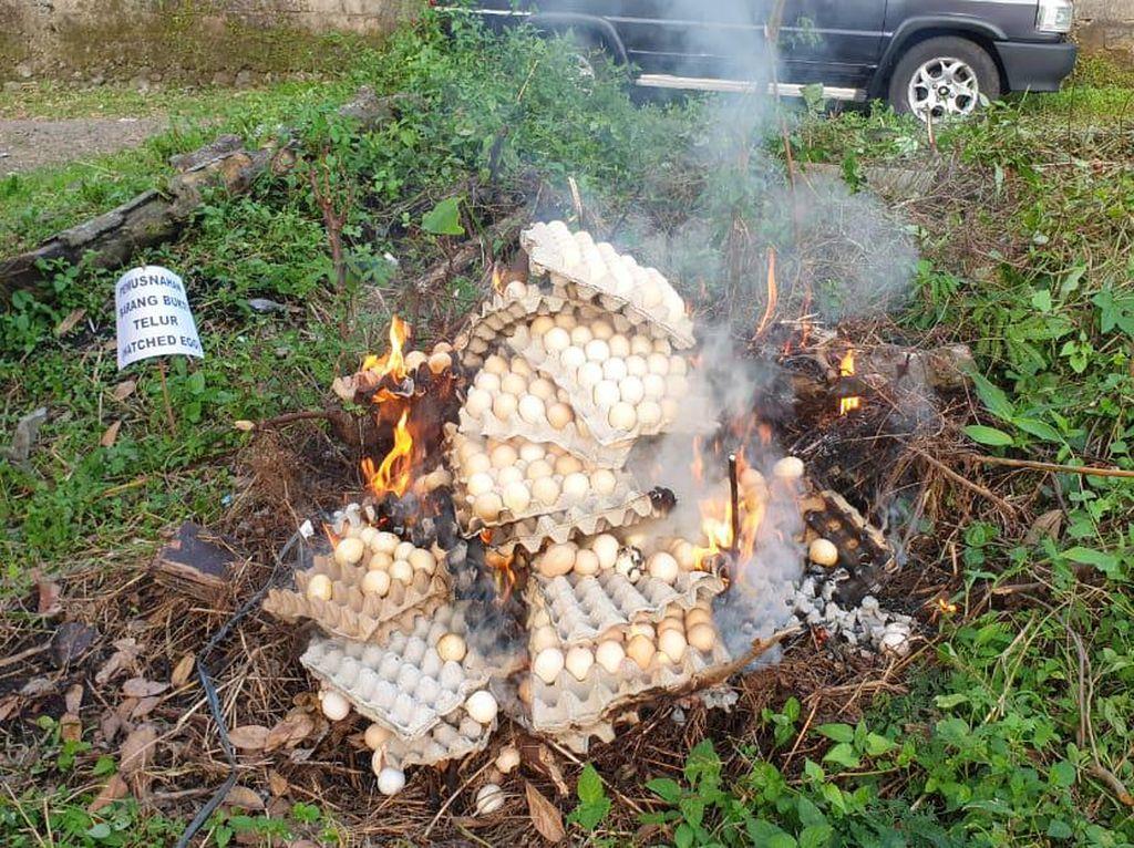 Satgas Pangan Temukan Telur Infertil di Pasar Tasikmalaya