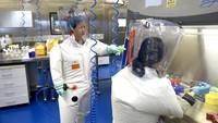 Prancis Diklaim Pernah Ingatkan AS Soal Senjata dari Lab Wuhan