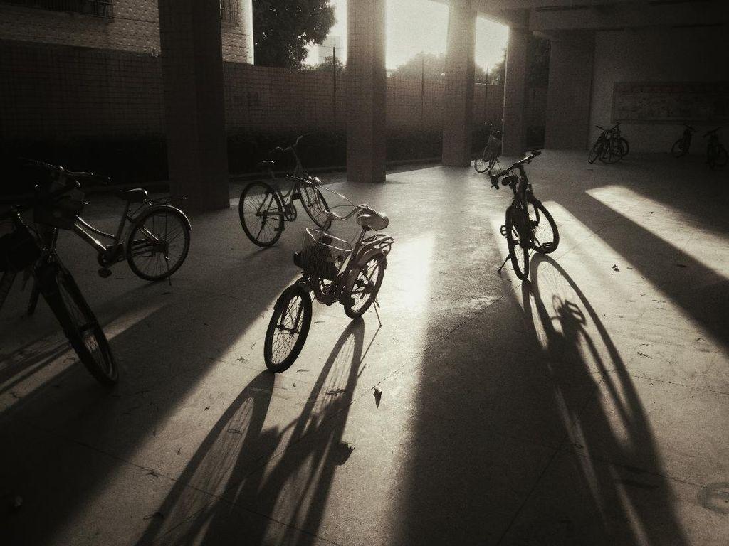 Maret-Mei, 48 Kecelakaan Melibatkan Pesepeda di Jalanan Yogyakarta
