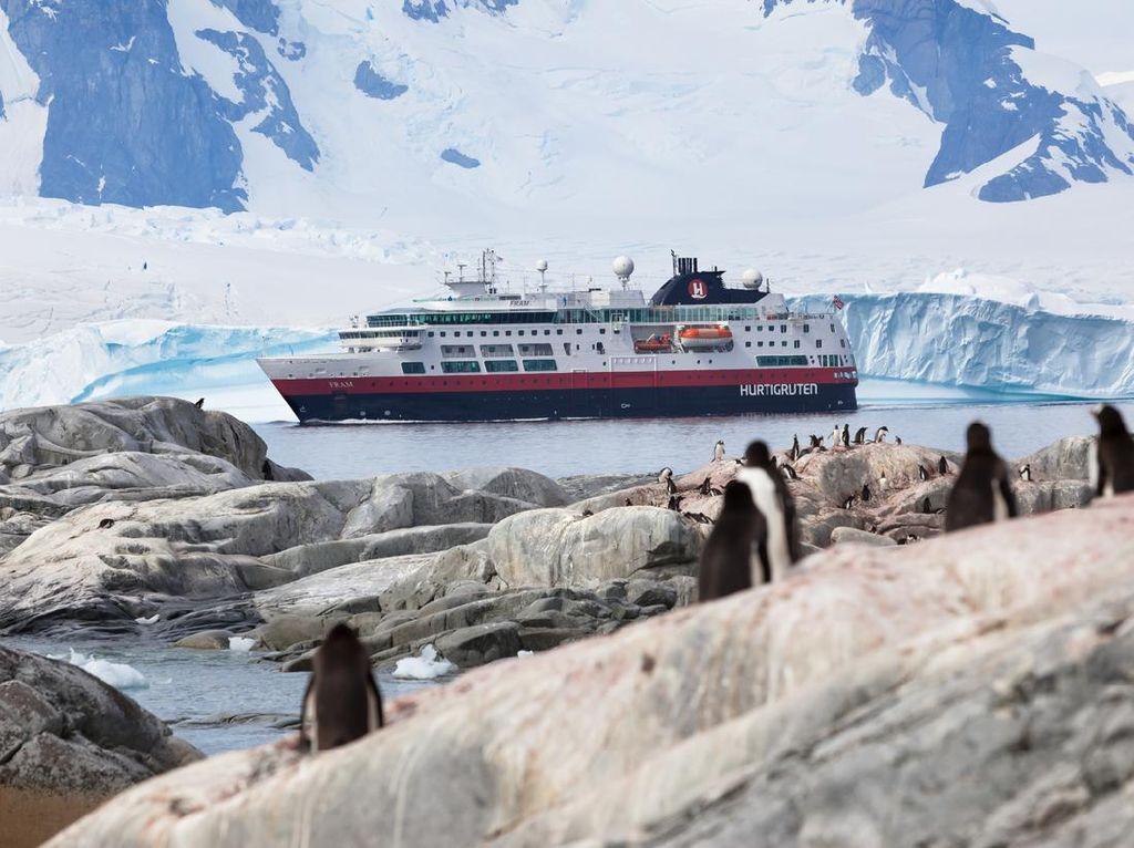Sejarah Wisata Antartika dan Aturan Perjalanannya dalam Foto