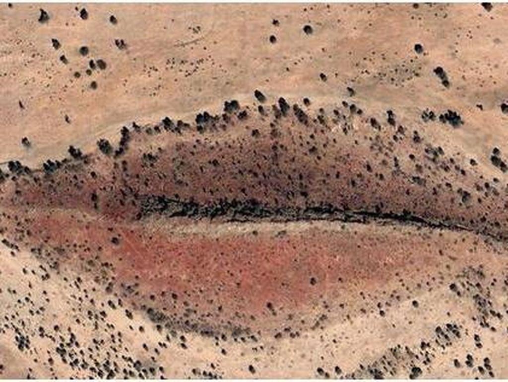 Penampakan di Google Earth yang Pernah Bikin Heboh Netizen