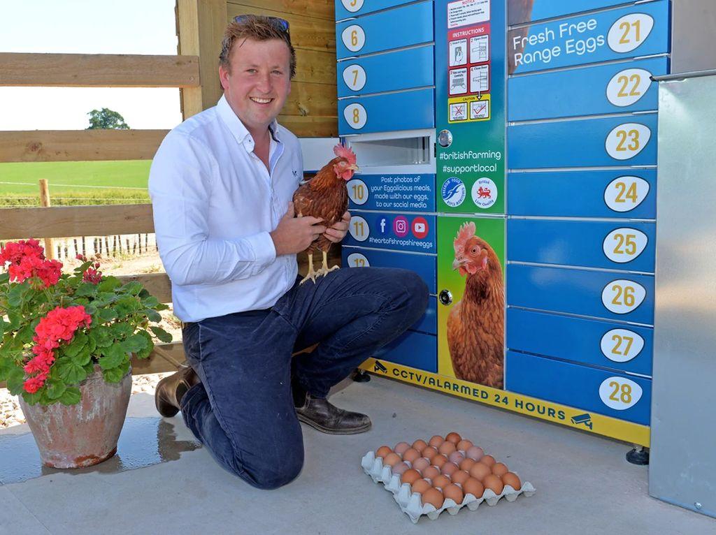 Eggcellent, Vending Machine Telur Praktis Solusi Saat Pandemi