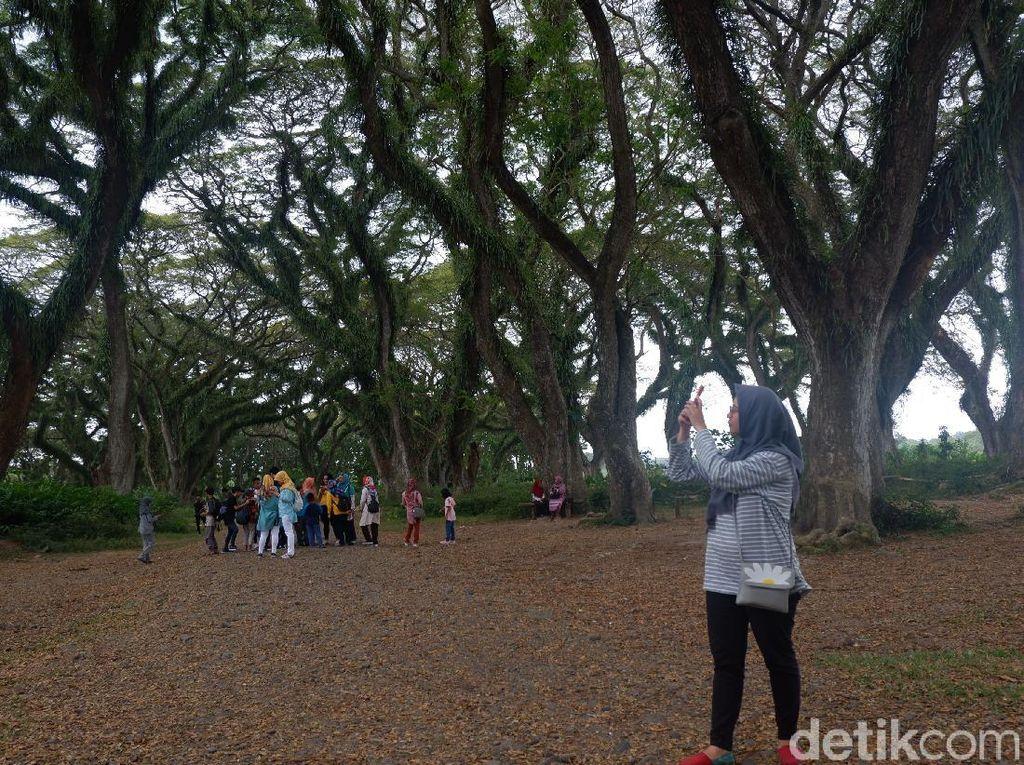 Pemkab Banyuwangi Klaim Tak Ada Penularan COVID-19 di Destinasi Wisata
