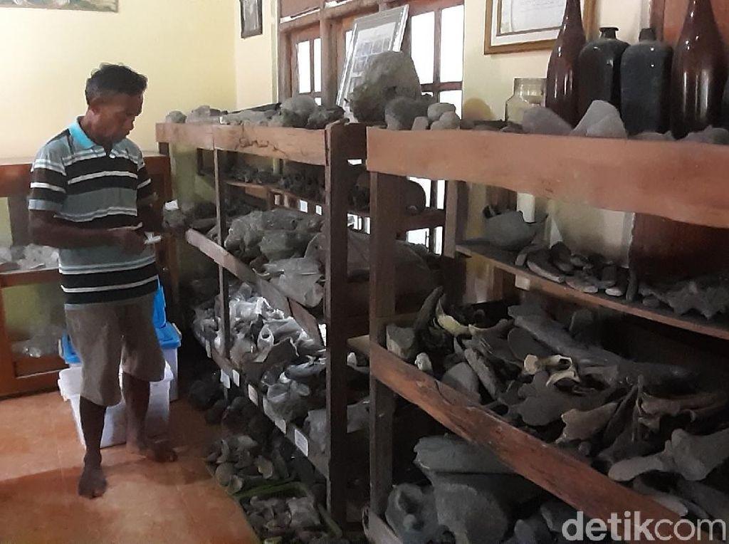 Ribuan Fosil Koleksi Warga Sragen Sedot Perhatian Peneliti Luar Negeri