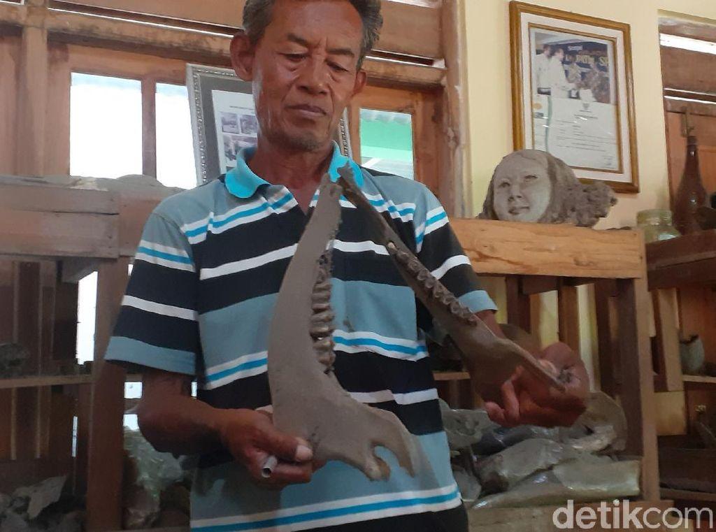 Wow! Warga Sragen Ini Koleksi Ribuan Fosil di Rumahnya