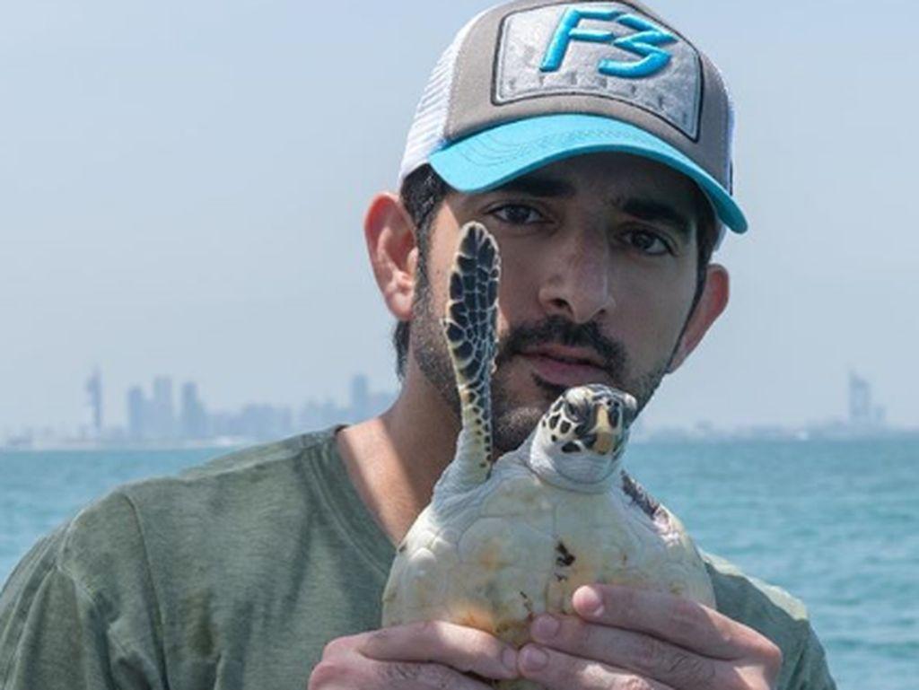 Tak Hanya Traveling, Pangeran Tampan Dubai Senang Penyu