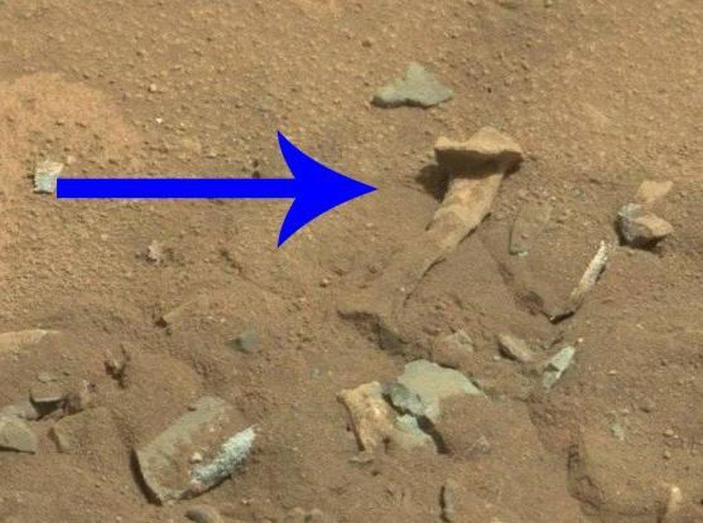 NASA Ungkap Foto Mirip Tulang Manusia di Mars