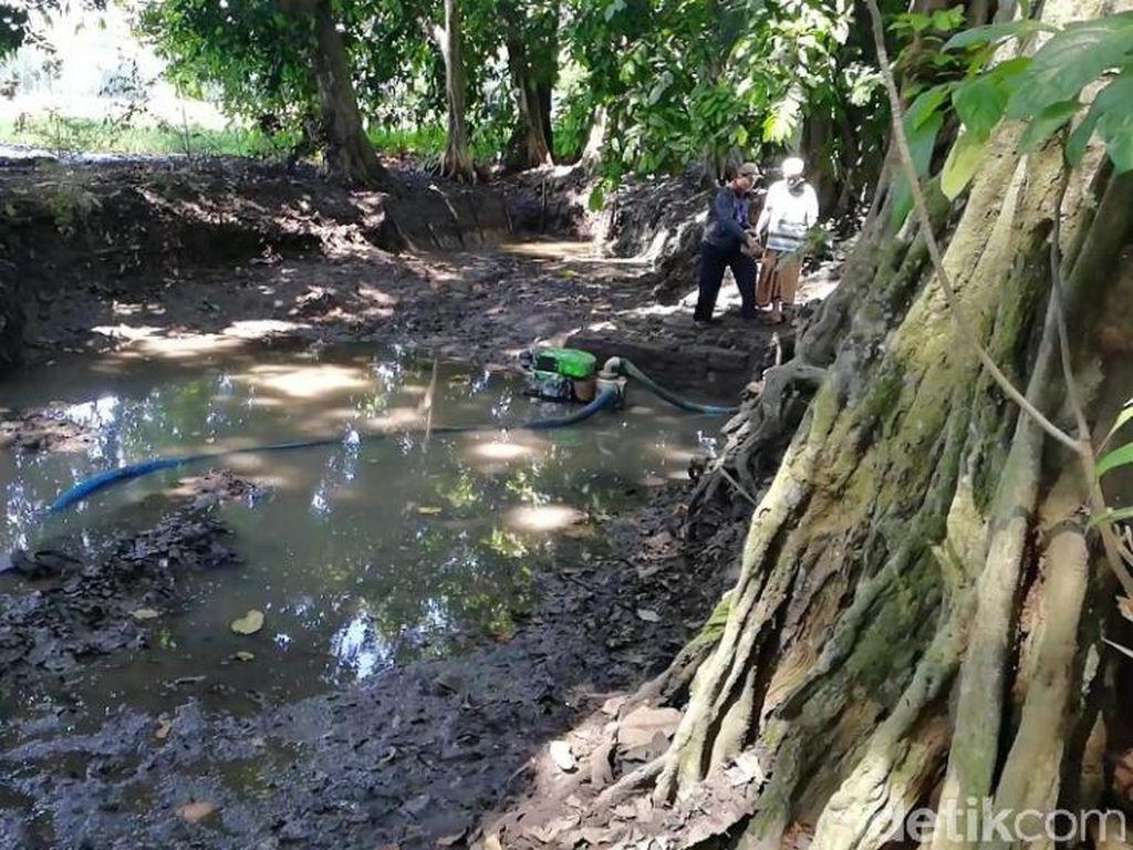 Penolakan Ekskavasi Situs Purbakala Dua Kali Terjadi di Pasuruan