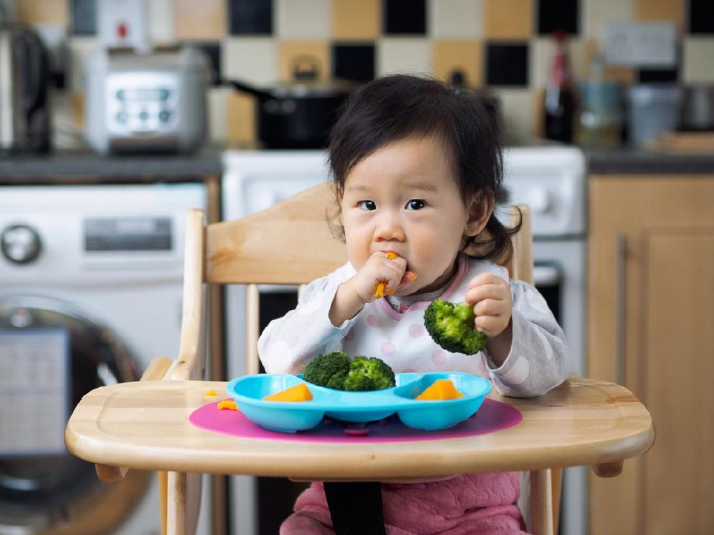 Makanan Tertentu Bisa Bikin Anak Cerdas? Dokter: Itu Mitos!