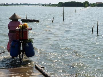 Potret Banjir Rob yang Rendam Permukiman di Demak