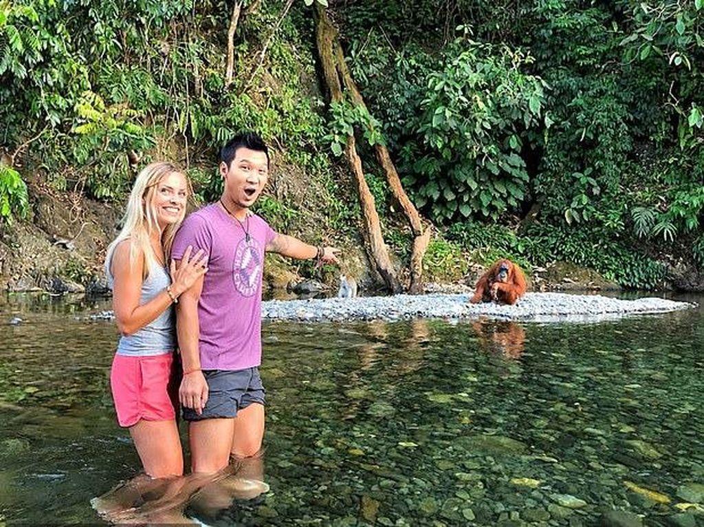 2 Bulan Terdampar di Rumah Orang Utan, Pasangan Turis Ini Happy