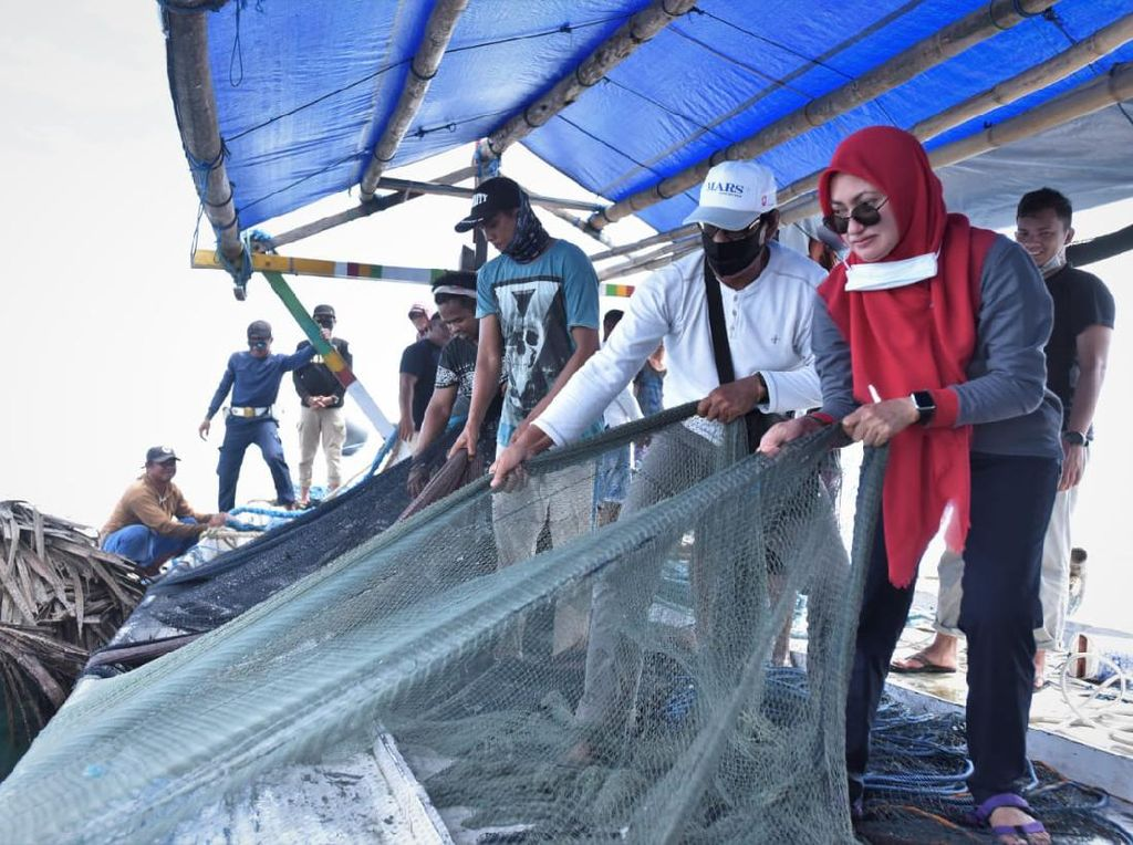Tarik Jaring Lingkar, Bupati Luwu Utara Jaring 150 Kg Ikan di Perairan Teluk Bone