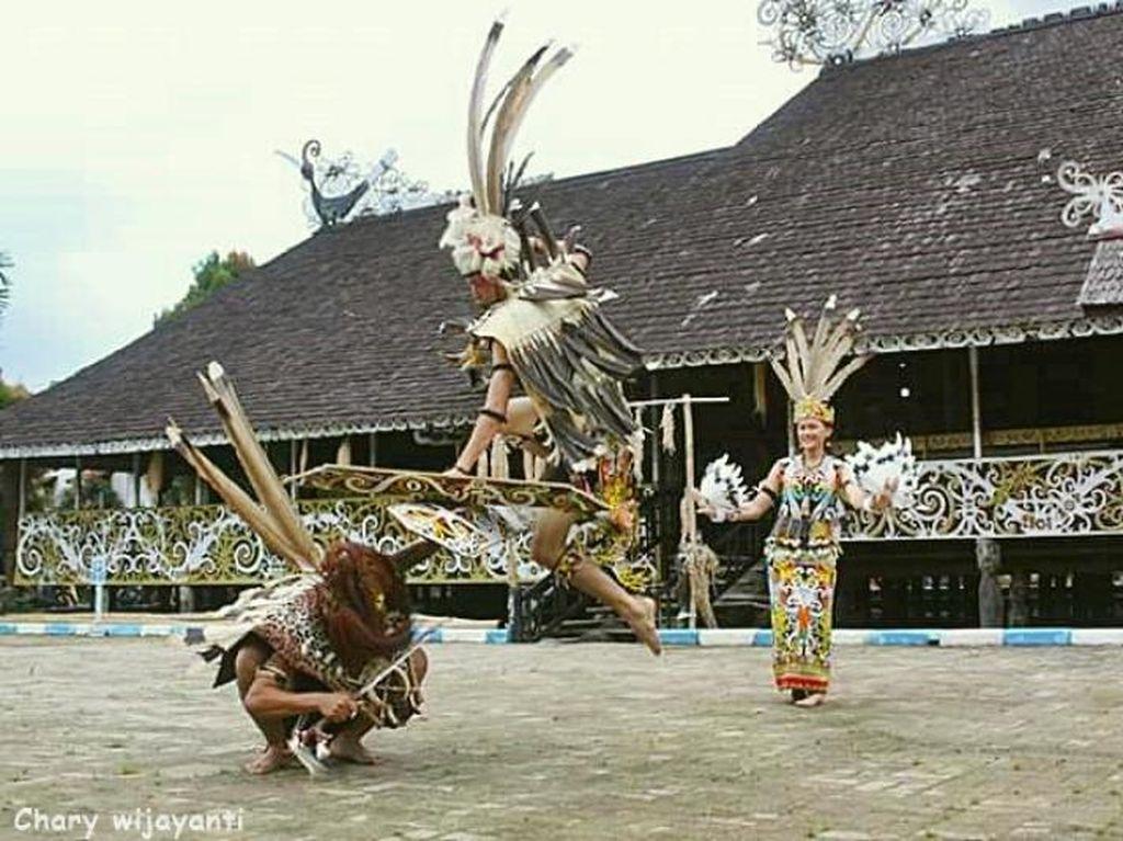Wisata Budaya Dayak di Desa Adat Pampang, Samarinda