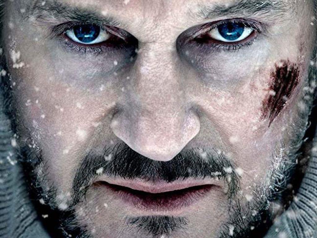 Sinopsis The Grey di Bioskop Trans TV, Dibintangi Liam Neeson
