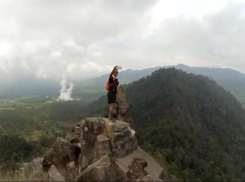 Perhutani Sulap Kebun Sayur Gunung Wayang Bandung Jadi Hutan Lagi