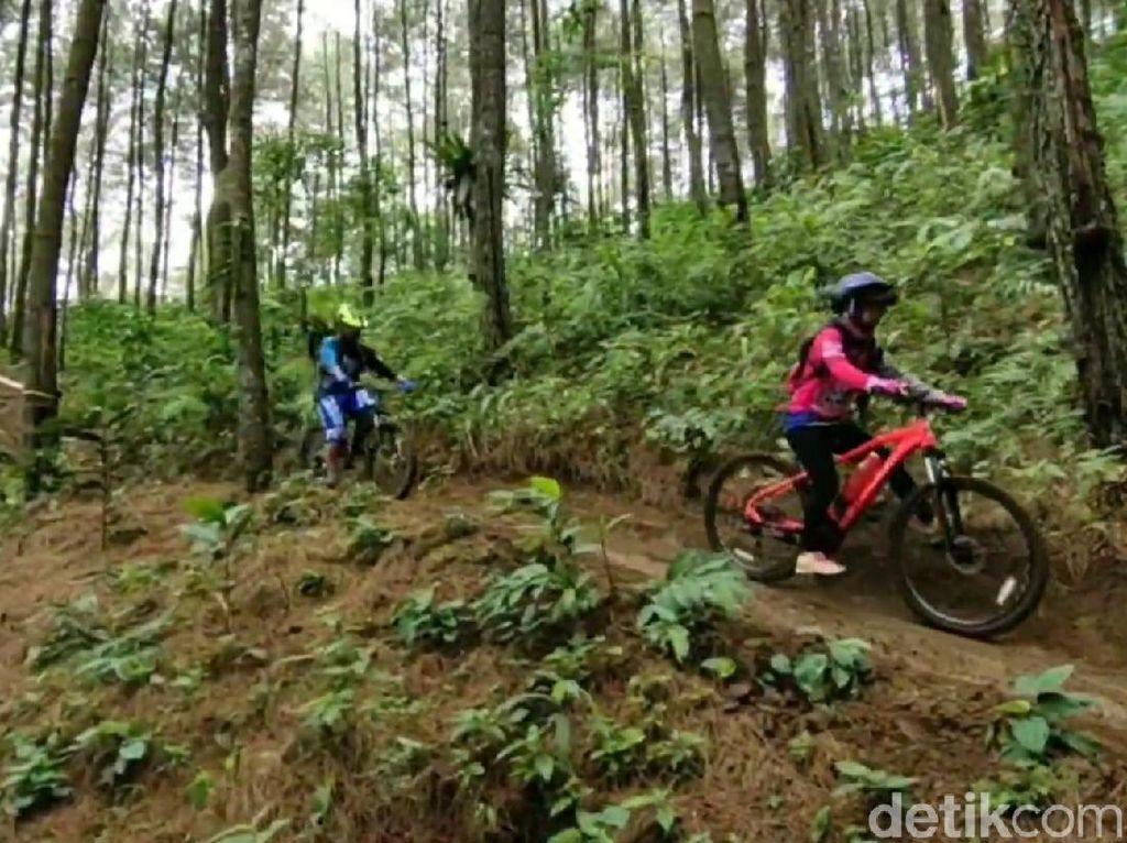 Pispun Bike Park, Trek Populer Andalan Pesepeda di Ciamis
