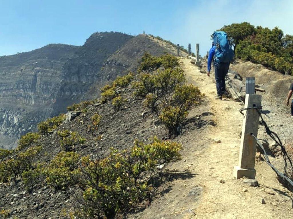 Gunung Gede Pangrango Tengah Pemulihan, Satwa Bisa Berkeliaran