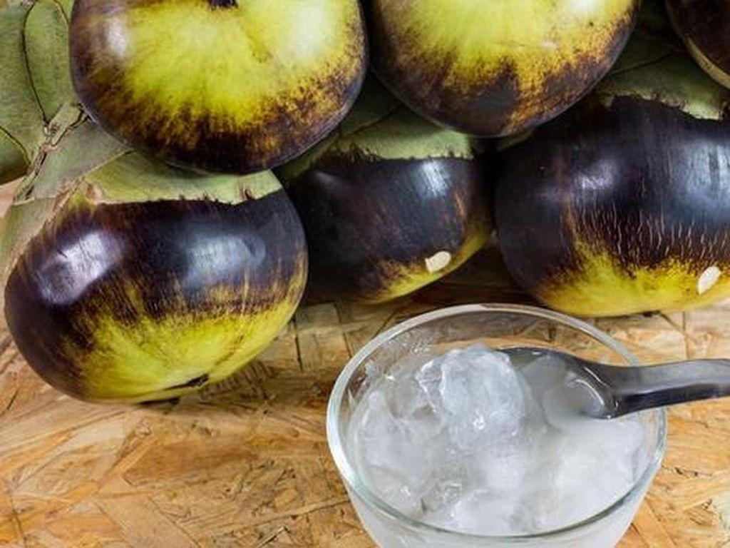 3 Minuman Tradisional Hasil Fermentasi Ini Kaya Khasiat Sehat