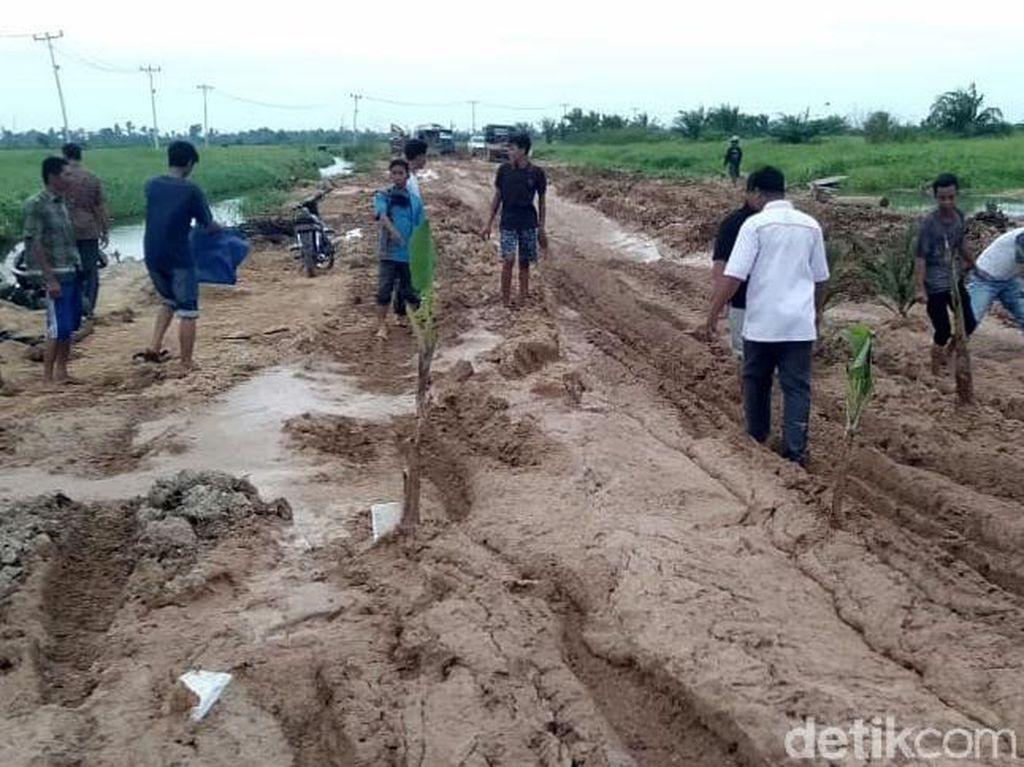 Tak Kunjung Diperbaiki, Jalan Rusak di Riau Ditanami Sawit
