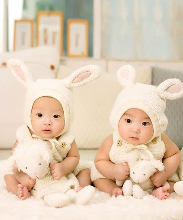 Terdapat dua jenis kembar, yaitu kembar identik dan tidak identik.