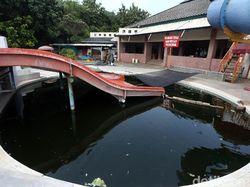 Miris! Waterpark ini Jadi Kolam Lele Gegara Corona