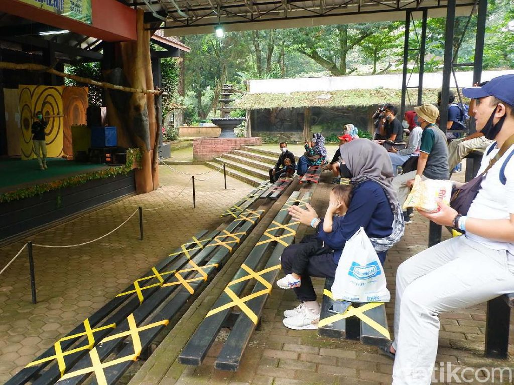 Hari Pertama Buka, Begini Potret di Kebun Binatang Bandung