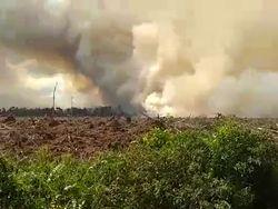 Memasuki Musim Kemarau, Lahan Gambut di Pelalawan Riau Terbakar