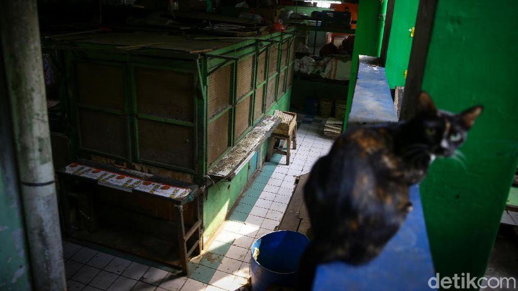 Pasar Mede Cilandak Mati Suri Usai Pedagang Positif Corona