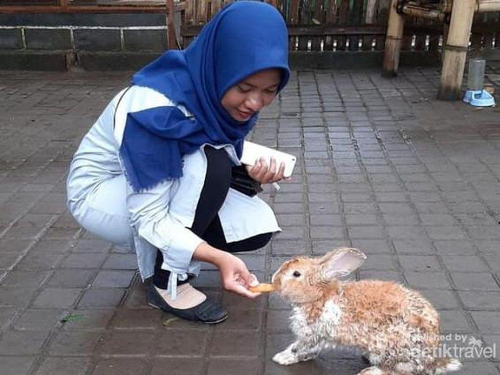 Bhumi Merapi, Wisata Ramah Anak Yogyakarta