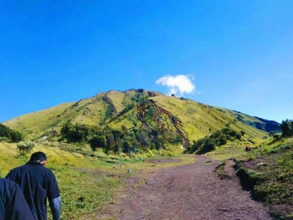 Cantiknya Gunung Merbabu yang Bikin Kangen