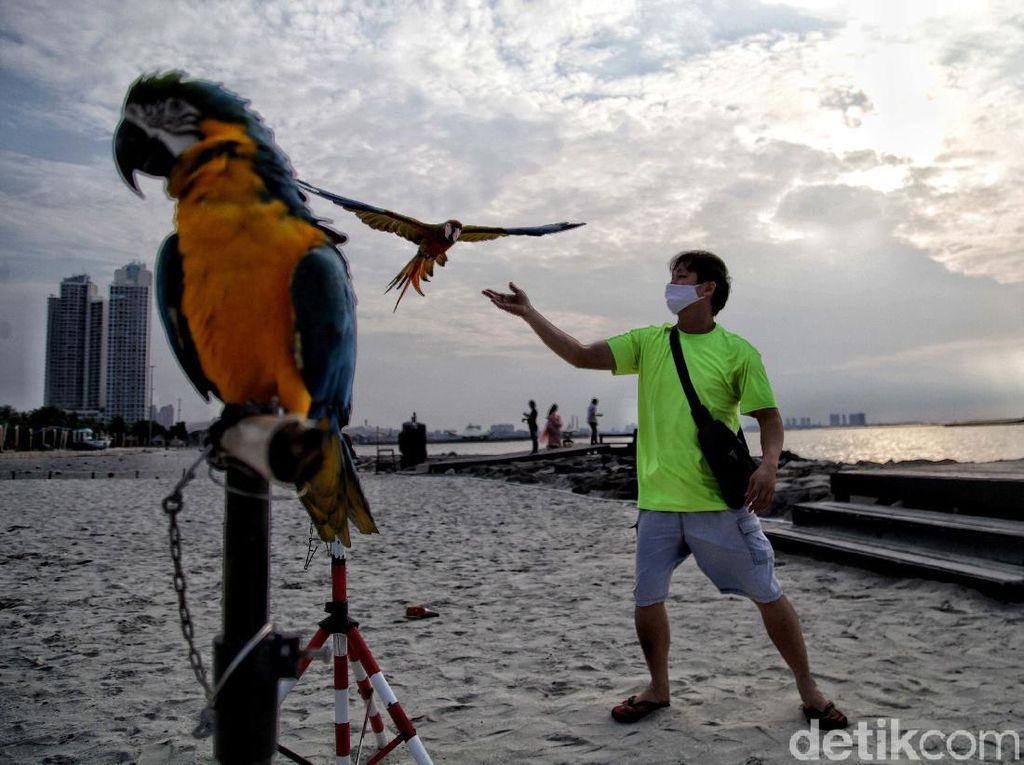 Asyiknya Menikmati Sore di Pantai Ancol