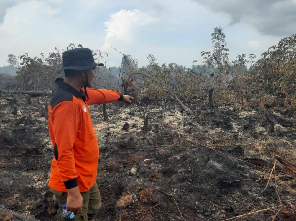Titik-titik Api Menyala Bikin Waspada Karhutla di Tanah Sumatera