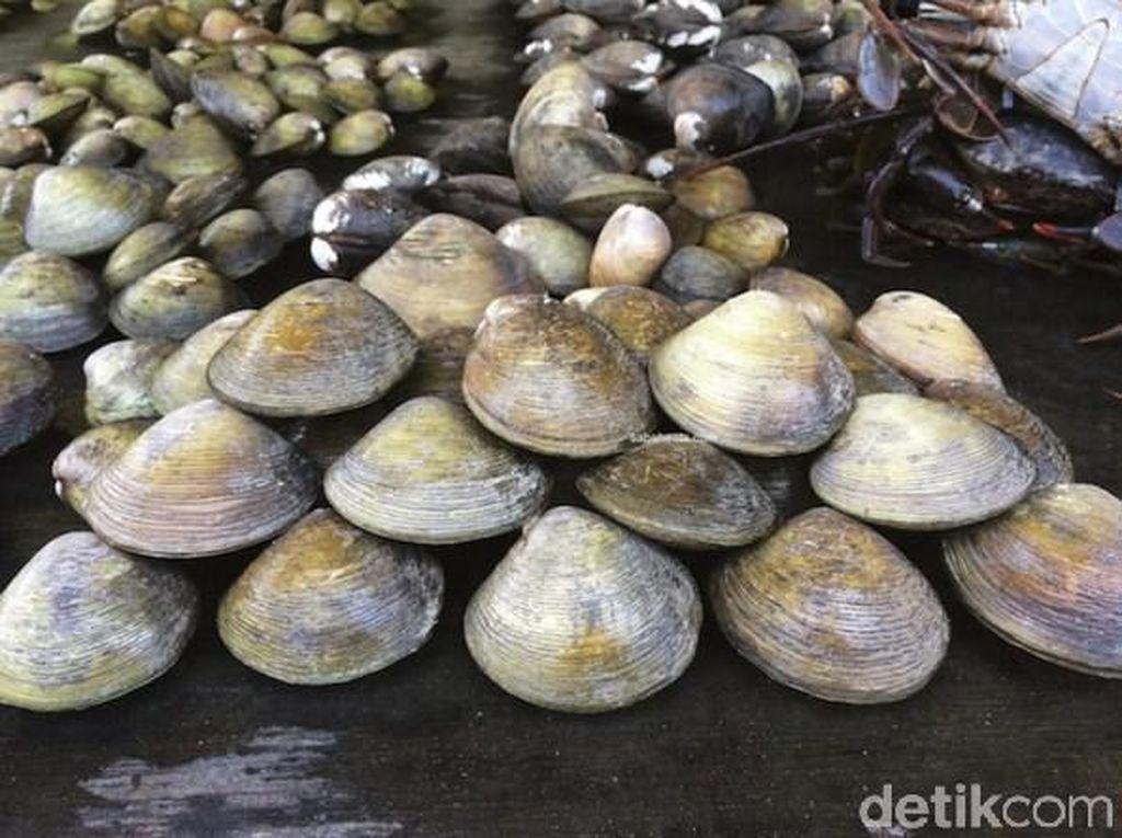 Samba Lokan Makanan Khas Mukomuko yang Berempah Lezat