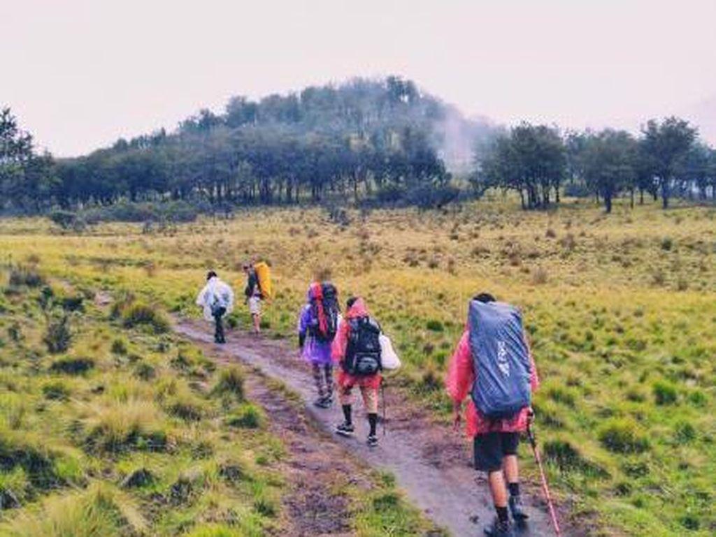 Cerita Pendakian di Gunung Lawu yang Indah, Bukan Mistis
