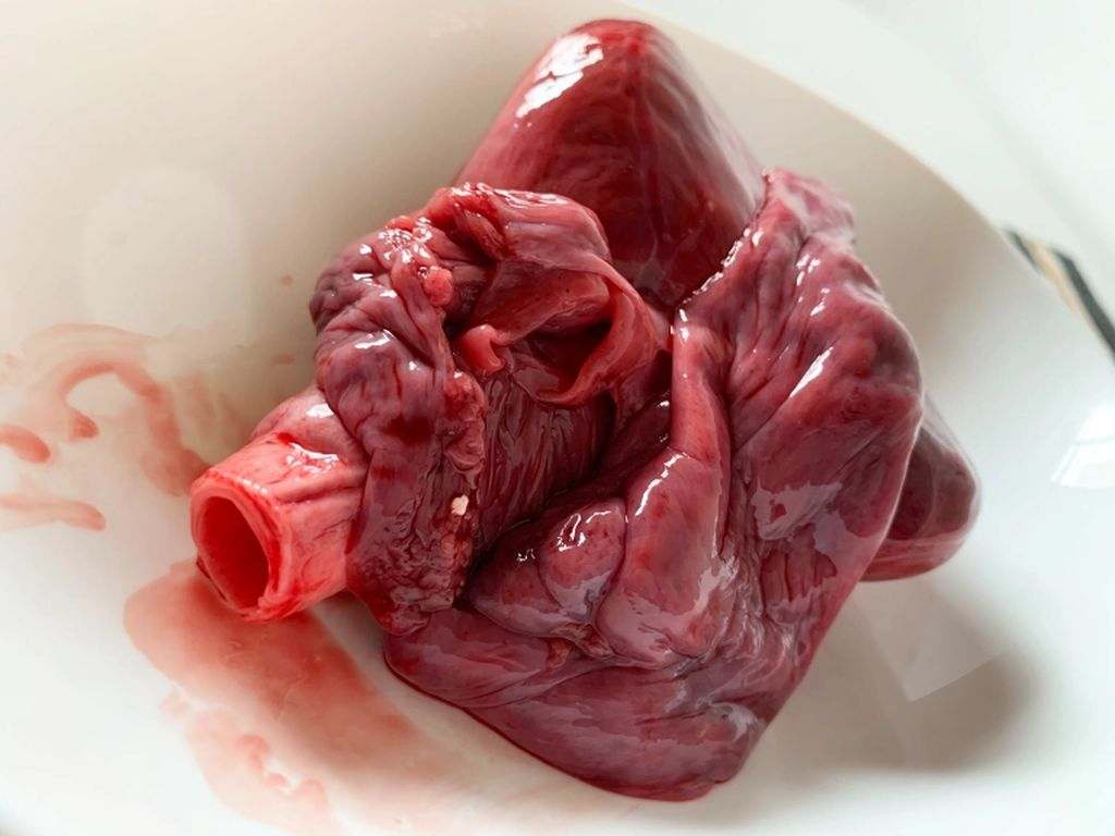 Jantung Ikan Hiu Dijual di Jepang, Bagaimana Rasanya?