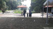 Hari Ini Dibuka, Kebun Raya Bogor Masih Sepi Pengunjung
