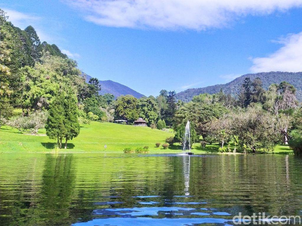 Kebun Raya Cibodas Punya 6 Taman yang Wajib Dikunjungi