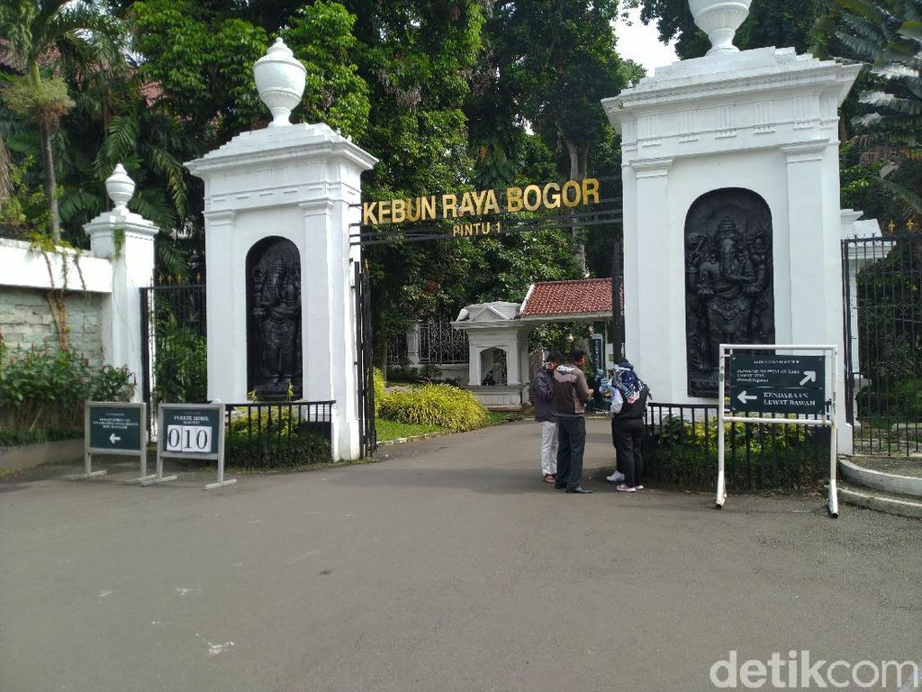 Ingin ke Kebun Raya Bogor? Ketahui Ini Dulu Ya