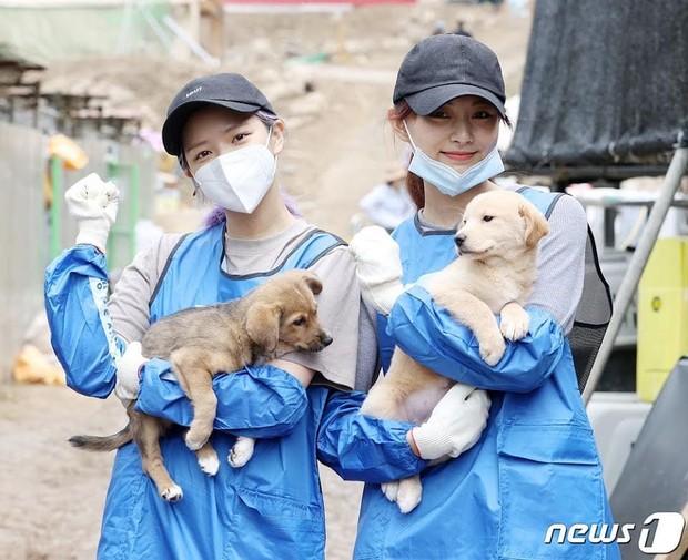 Jeongyeon TWICE/ Foto: Koreaboo