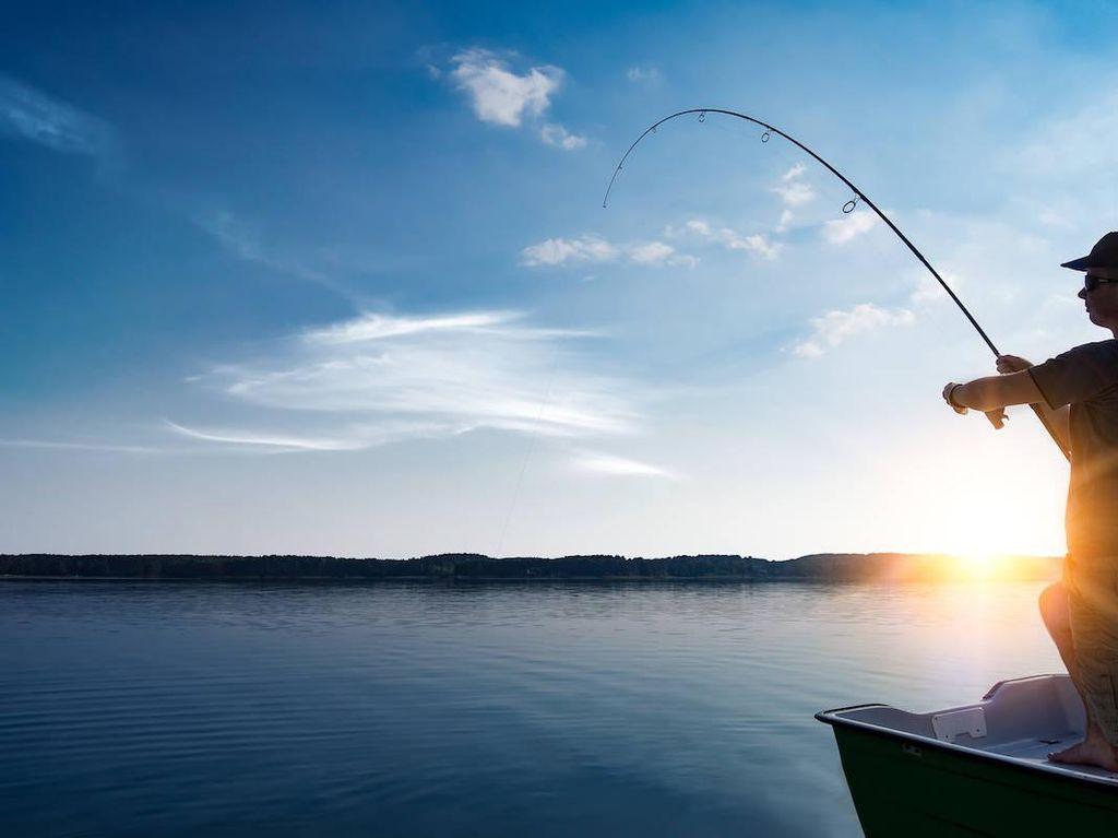 Bukan Ikan, 5 Hasil Pancingan Ini Isinya Mesin Kopi hingga Jeroan Sapi