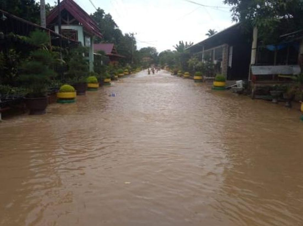 Banjir Terjang Sejumlah Desa di Luwu Sulsel, 100 KK Minta Dievakuasi