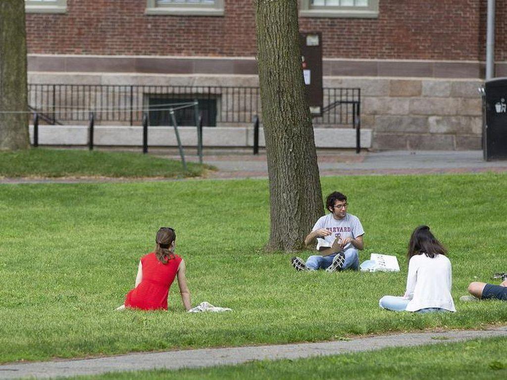 Mahasiswa Asing Terancam Dideportasi, Harvard dan MIT Gugat Pemerintah AS