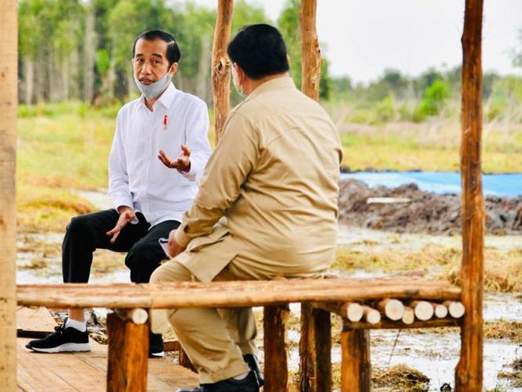 Gerindra soal Relawan Jokpro 2024: Jabatan Presiden Maksimal 2 Periode