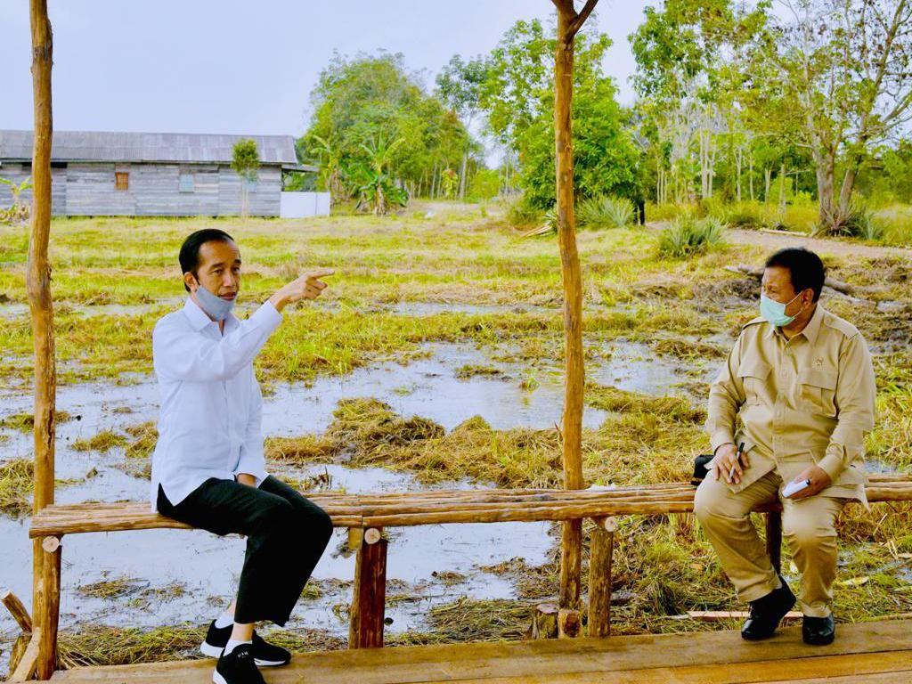 Jokowi-Prabowo Siapkan Lumbung Pangan Antisipasi Krisis Pangan