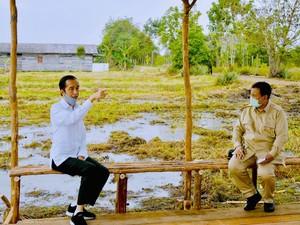 Momen Jokowi-Prabowo: Teguran di Rapat hingga Berdua di Lumbung Pangan
