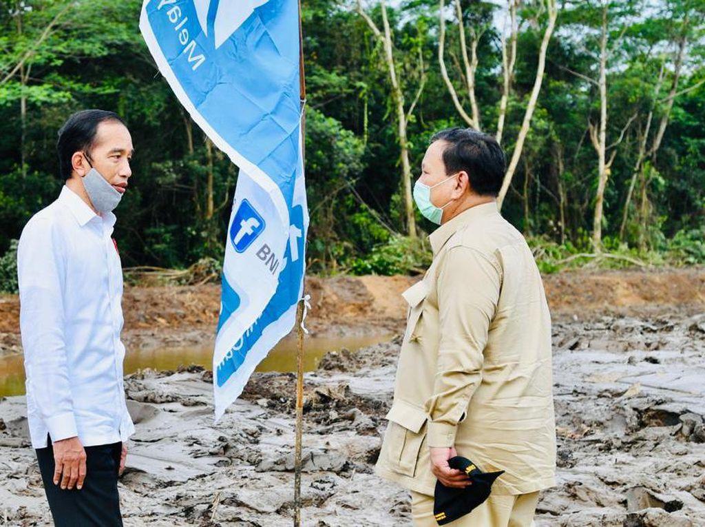 4 Alasan Jokowi Pilih Prabowo Jadi Komandan Proyek Lumbung Pangan