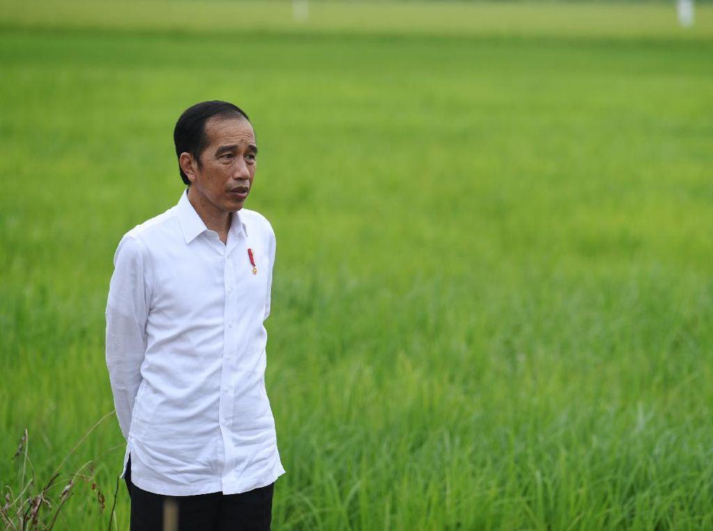 Beri Bantuan Modal ke Pedagang, Jokowi: Jangan Dipakai Beli HP!