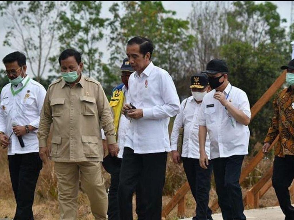 TNI Terjun ke Lumbung Pangan, Siapkan Lahan buat Ditanami Singkong