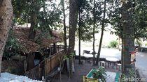 Slurpp! Menikmati Wedang Sereh Jahe di Rumah Pohon Asri